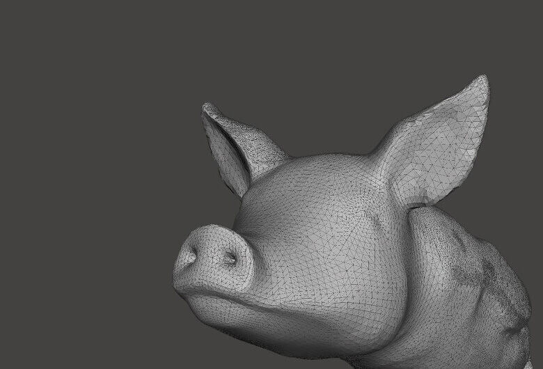 The fine trinaglar mesh is approximately encoding the surface geometry of this 3D model (source : i.materialize)
